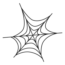 Spider web thin line icon