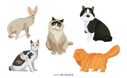 Conjunto de ilustração de gato