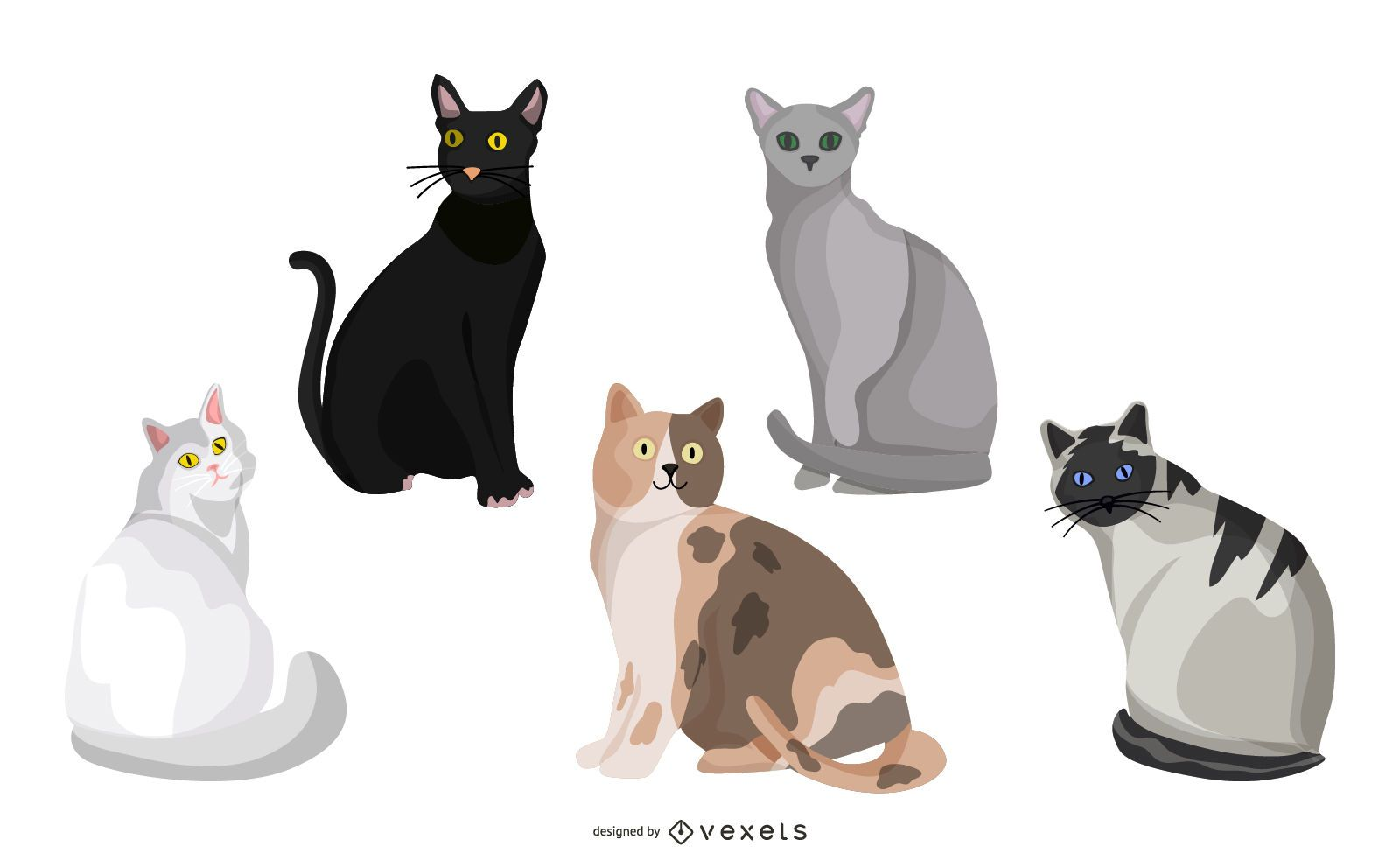 Cats sticker collection