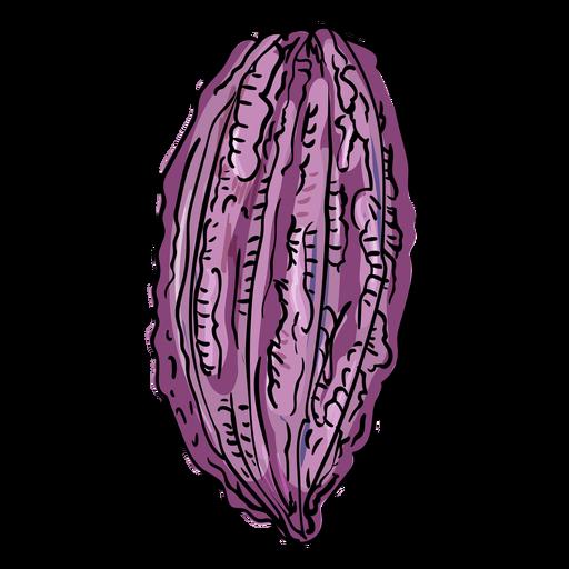 Cacao pod illustration