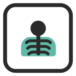 Chest x ray colored stroke icon