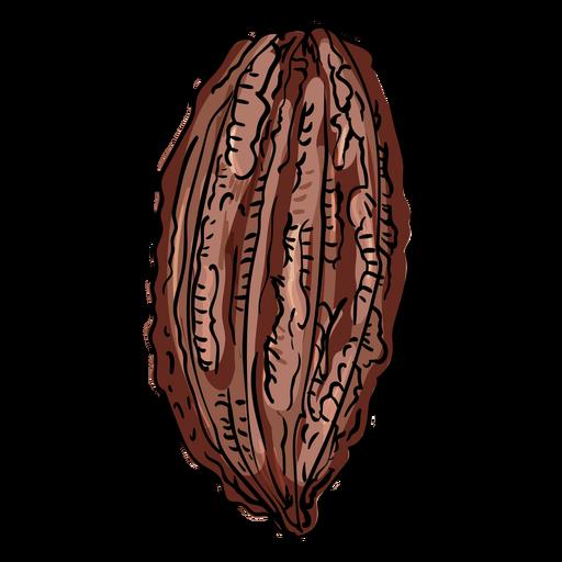 Ilustración de vaina de cacao