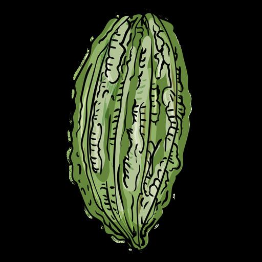 Ilustración de fruta de árbol de cacao Transparent PNG