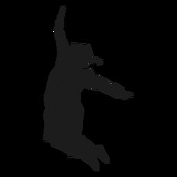 Graduado saltando silueta
