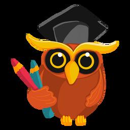 Diplom-Eule, die Bleistifte hält