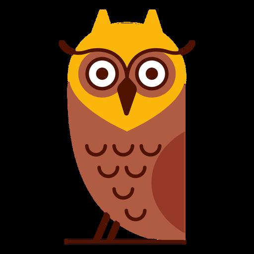 Ilustración de pájaro búho Transparent PNG