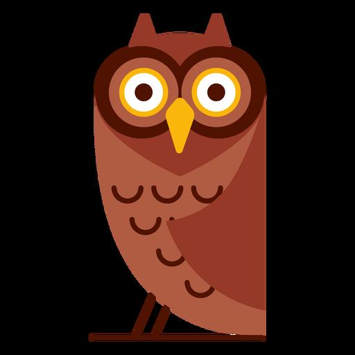 Ilustração de coruja surpresa Transparent PNG