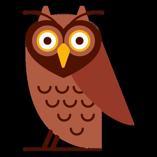 Wise owl illustration Transparent PNG
