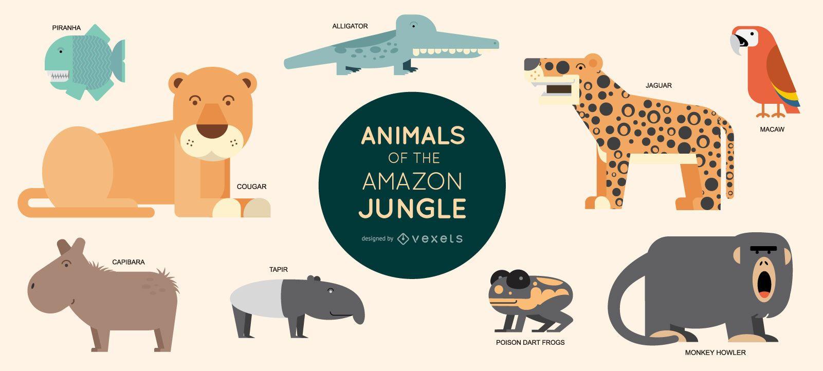 Amazon animals illustration set