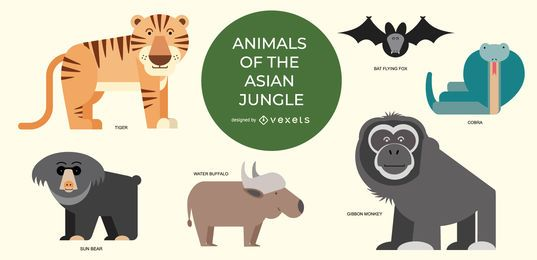 Asian jungle animals illustration set