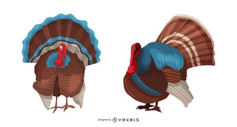 Ilustración de aves de pavo