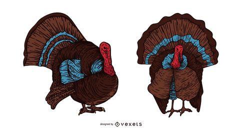 Ilustración de dibujado a mano de pájaro de pavo