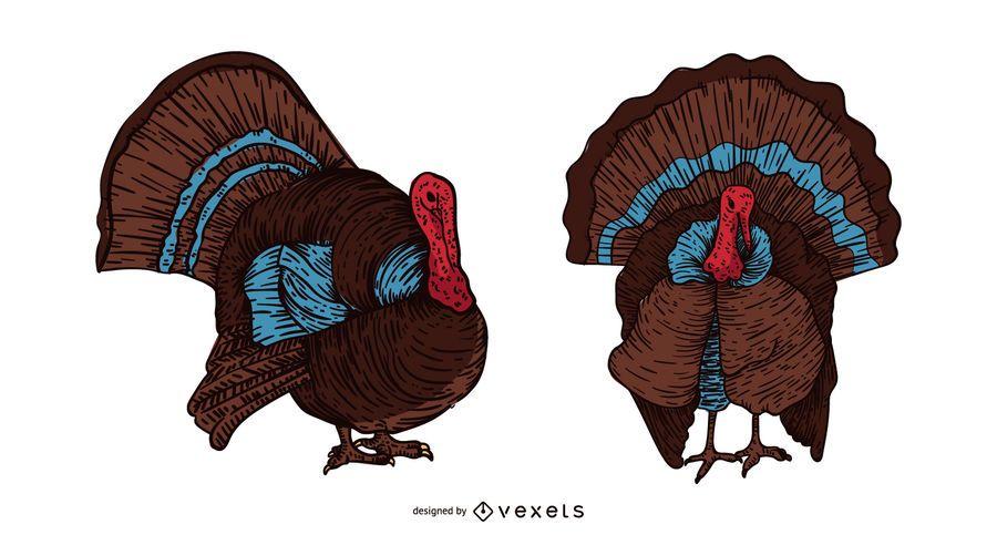 Die Türkei-Vogelhand gezeichnete Abbildung
