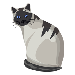 American shorthair cat illustration