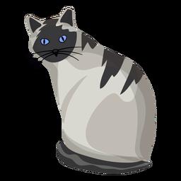 Ilustración de gato americano de pelo corto