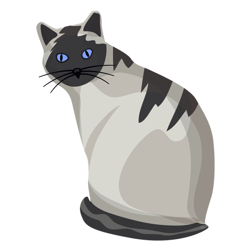 American shorthair cat illustration Transparent PNG