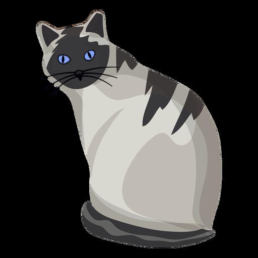 Ilustración de gato americano de pelo corto Transparent PNG