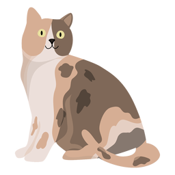 Animal gato, ilustração