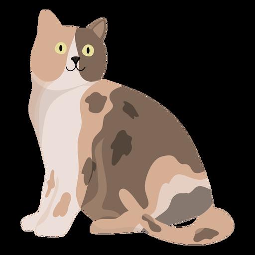 Animal gato, ilustração Transparent PNG