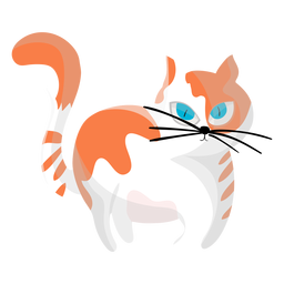 Cat pet illustration