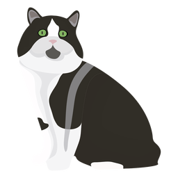 Cymric cat illustration