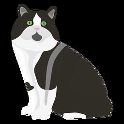 Ilustración de gato cymric