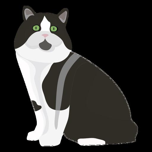 Ilustración de gato cymric Transparent PNG
