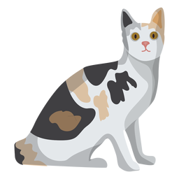 European shorthair cat illustration
