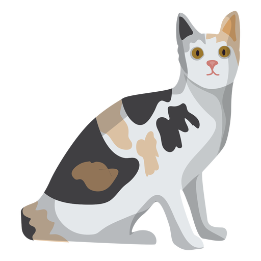 Ilustração de gato gato de pelo curto Europeu Transparent PNG