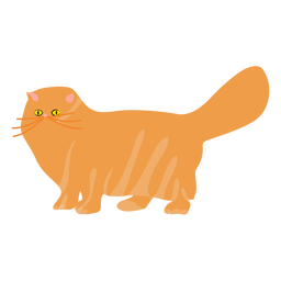 Pet cat illustration