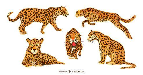 Conjunto de diseño gráfico jaguar