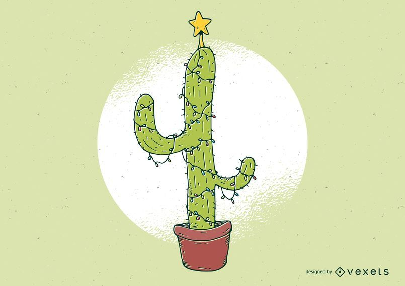 Christmas Cactus Illusration