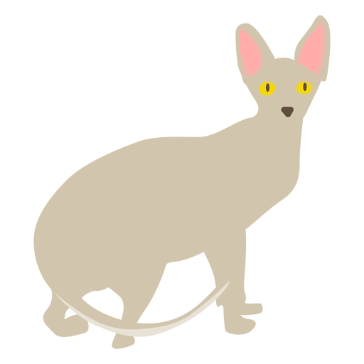 Sphynx cat illustration Transparent PNG