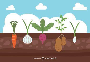 Garden Crops Design