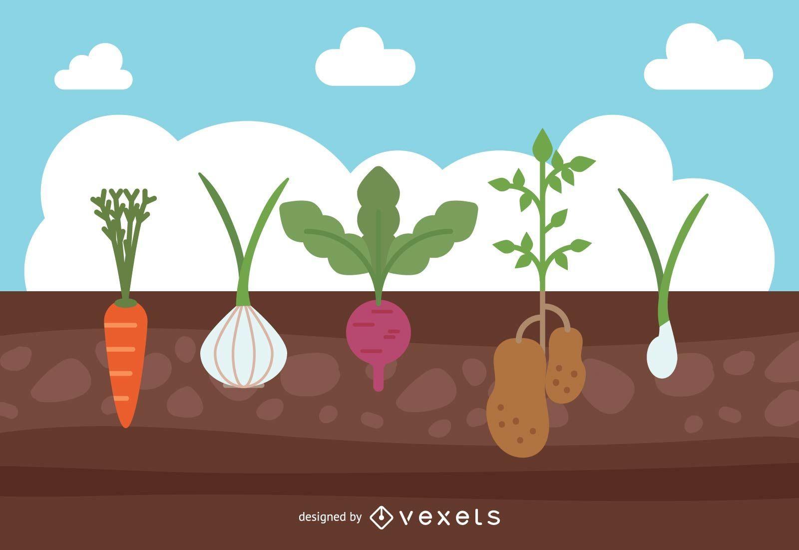 Projeto de culturas de jardim