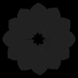 Anemone flower vector