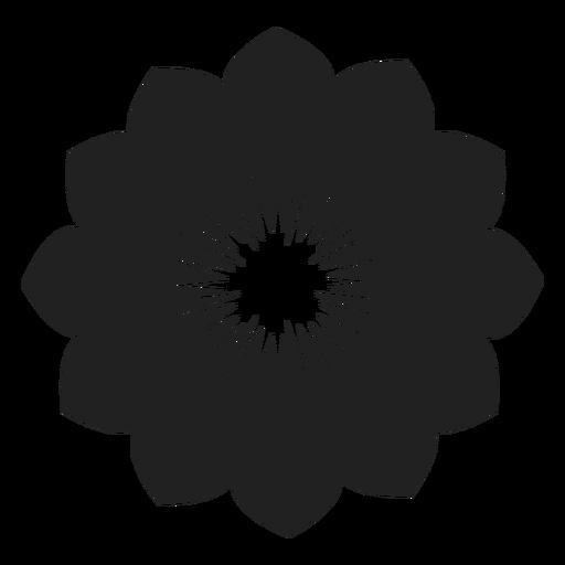 Anemone flower vector Transparent PNG