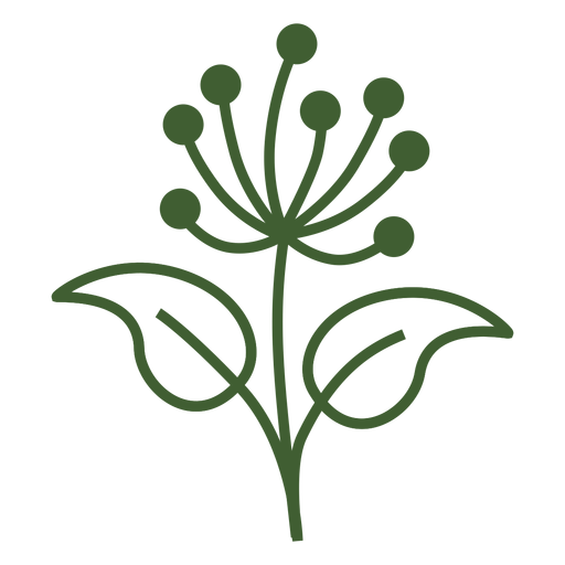 Dandelion flower icon Transparent PNG