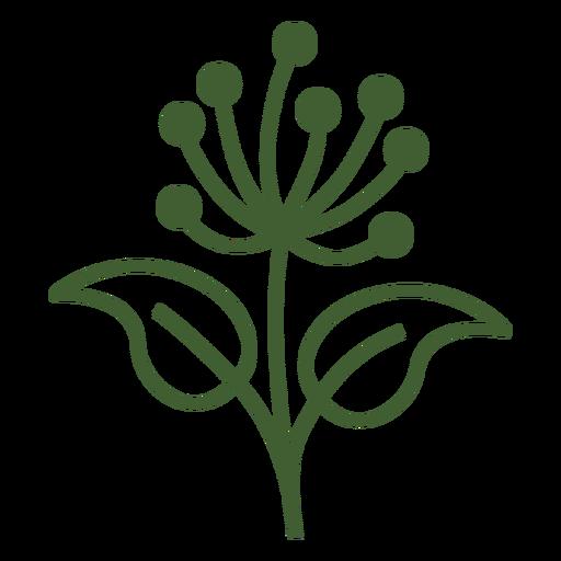Dandelion flower icon
