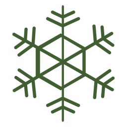 Detailed snowflake icon