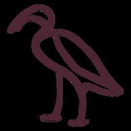 Símbolo de jeroglíficos ibis egipcios