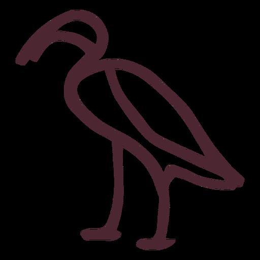 Egyptian ibis hieroglyphs symbol