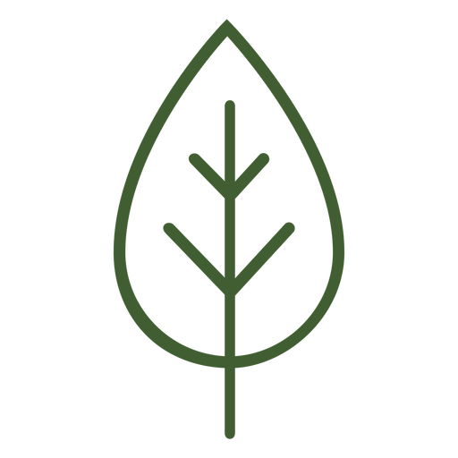 Flat leaf icon Transparent PNG