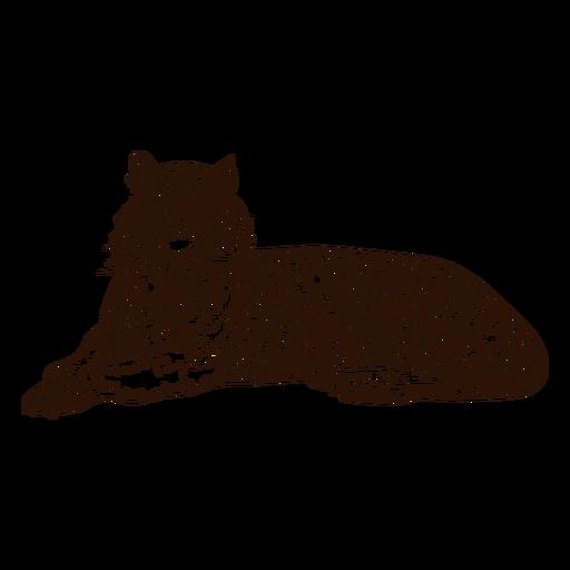 Dibujado a mano ilustración de tigre relajante Transparent PNG