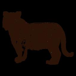 Tigre da selva mão ilustrações desenhadas