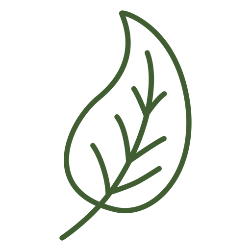 Leaf with stem icon Transparent PNG