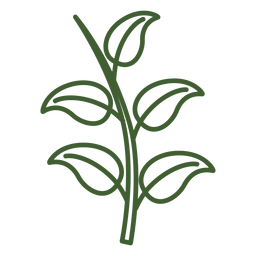 Leaves on a branch icon