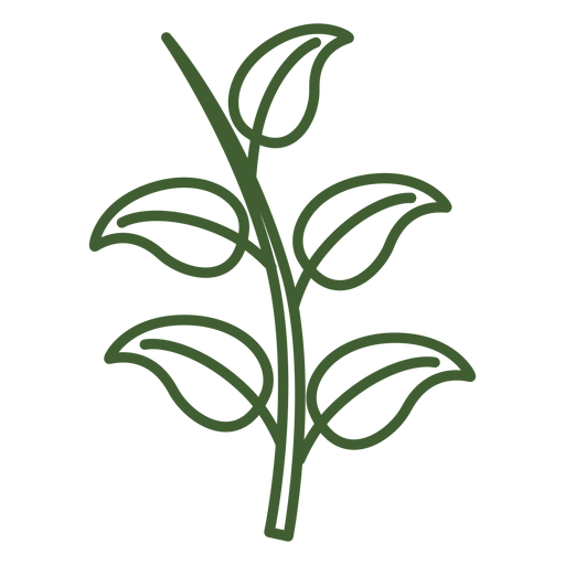 Hojas en un icono de rama. Transparent PNG