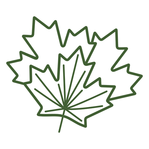 Maple tree leaf icon Transparent PNG