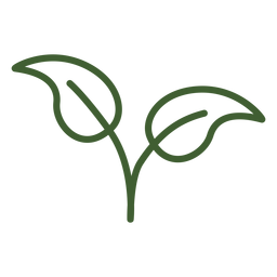 Ícone natural de duas folhas